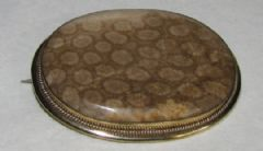 Photo 1 for VICTORIAN FOSSIL CORAL BROOCH